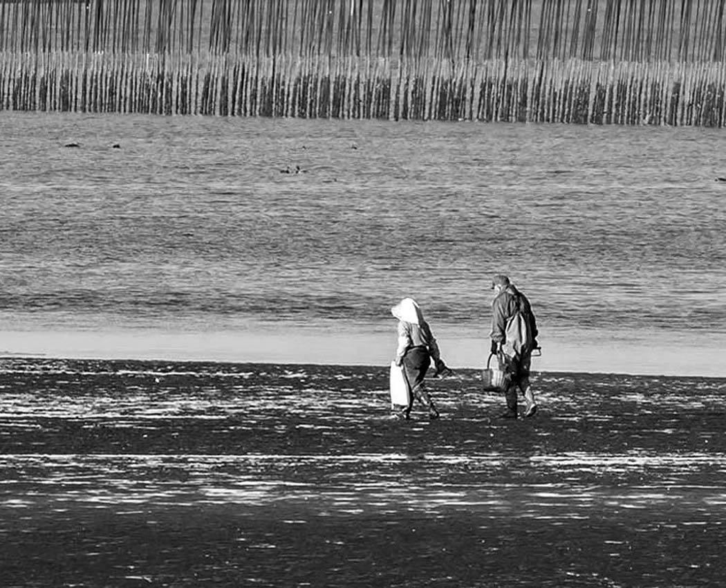 ✔ 干潟の砂模様=熊本県:御輿来海岸_d0238245_22540466.jpg