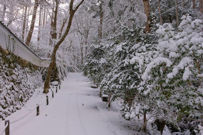 京都 大原雪景色 2019_f0021869_00251406.jpg