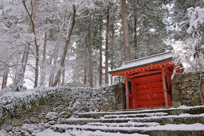 京都 大原雪景色 2019_f0021869_00251491.jpg