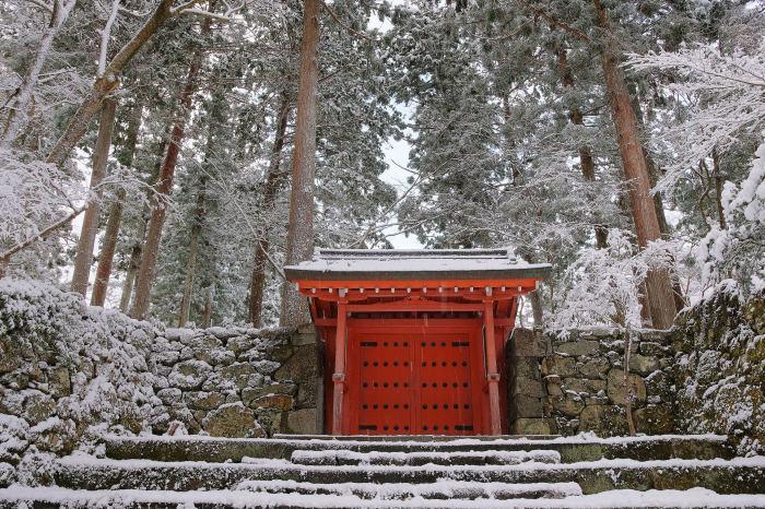京都 大原雪景色 2019_f0021869_00251531.jpg