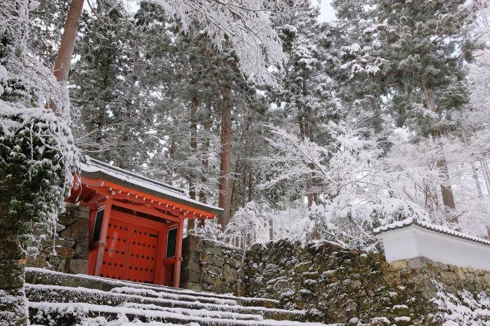 京都 大原雪景色 2019_f0021869_00251632.jpg