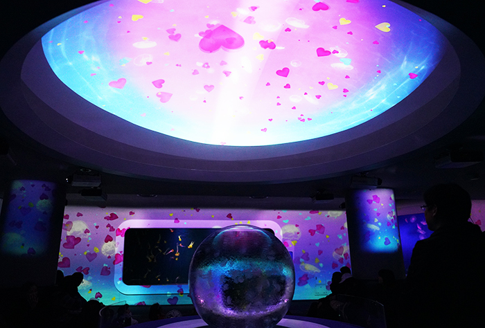 新江ノ島水族館はバレンタイン セクシーなハコフグちゃん _b0145398_22195922.jpg