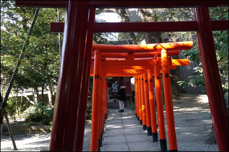 来宮(きのみや)神社 :熱海_b0019313_16111520.jpg