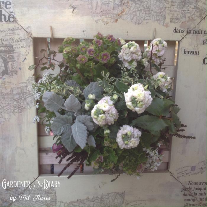 at Garden with White._e0365614_18410656.jpg