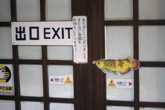 東京タワー水族館~日本庭園_b0355317_19571761.jpg
