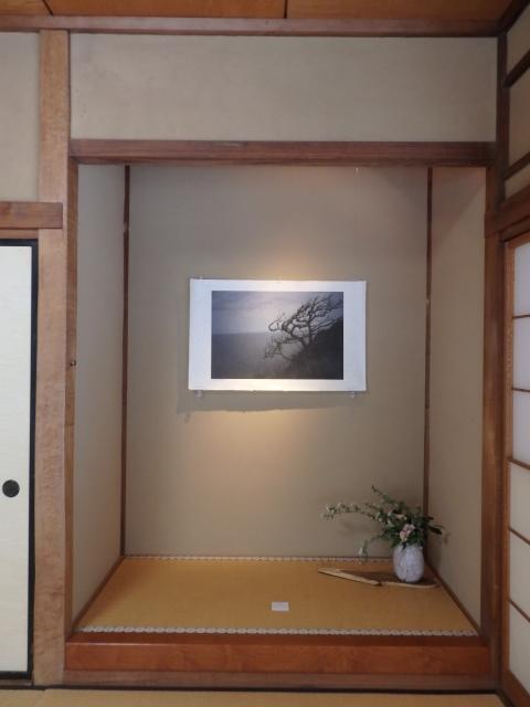 自然の墨筆 「特別展示 水の呼吸 山下誠一」_e0138627_12111300.jpg