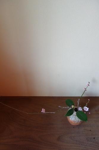 立春に梅を生ける_a0197730_15123759.jpg