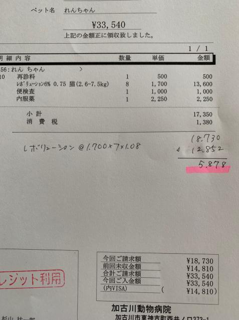 えらいこっちゃ&れんちゃん医療費報告_d0355333_15111583.jpg