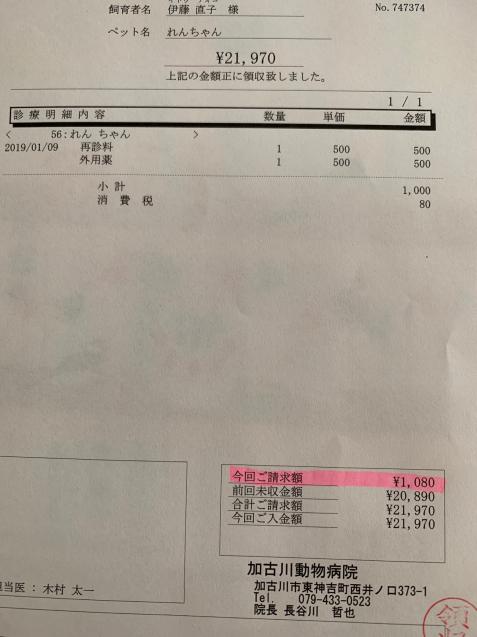 えらいこっちゃ&れんちゃん医療費報告_d0355333_15111762.jpg