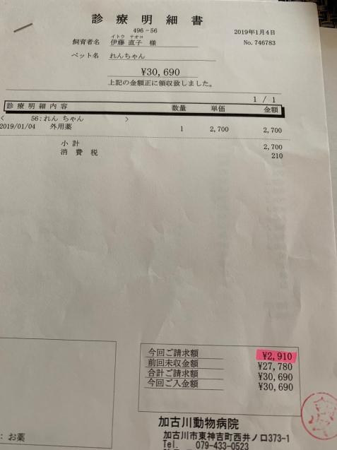 えらいこっちゃ&れんちゃん医療費報告_d0355333_15221083.jpg