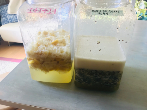 ☆ミネラル発酵ドリンク 発酵中☆_a0153945_10333594.jpg