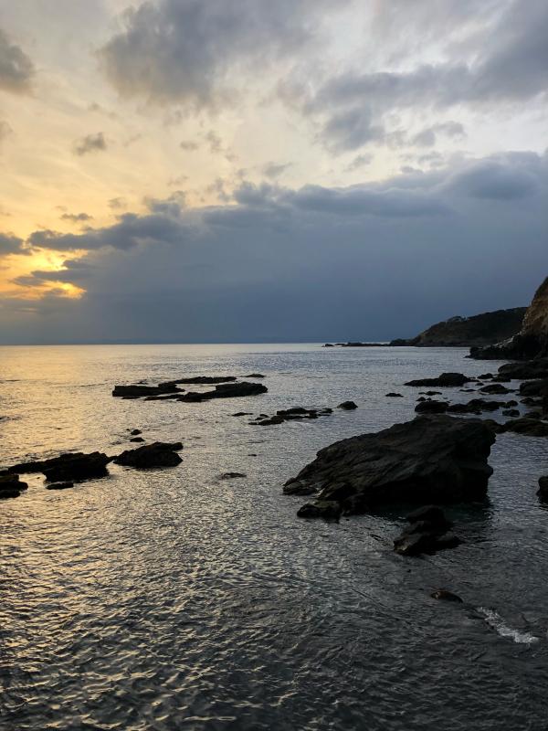 三浦半島に〜_e0321360_23120169.jpg