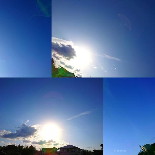 2/10(日)①    今空♪_d0362666_08552845.jpg