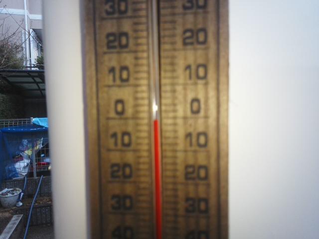 🌟 マイナス1℃  ちらちら雪 ⛄ が舞う朝「温かくしてお過ごしください」🌝_f0061067_19412714.jpg