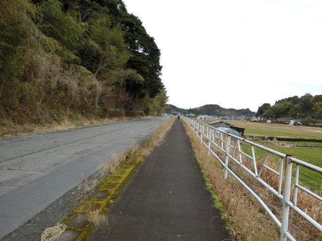 第2回錦江湾一周100キロの完歩報告_e0294183_15285539.jpg
