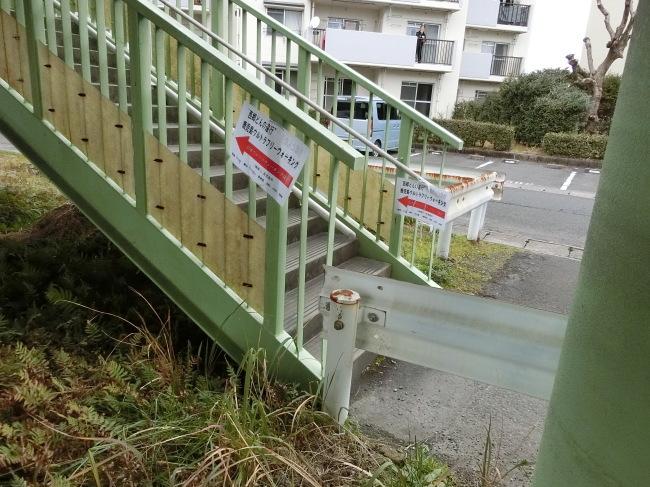 第2回錦江湾一周100キロの完歩報告_e0294183_15335461.jpg