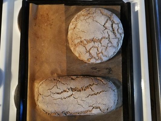 ライ麦粉で自家製酵母 サワードウ _d0090294_22555519.jpg