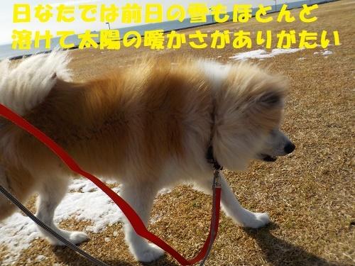 f0121712_14192276.jpg