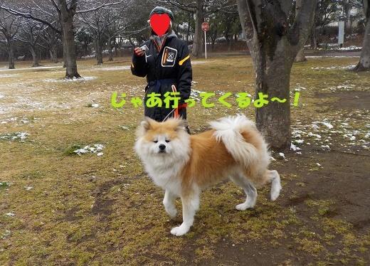 f0121712_14481535.jpg
