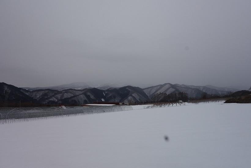雪景色_e0112417_23113854.jpg