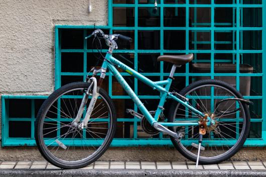 Bicycle   ・・・同系色・・・_f0333031_06451244.jpg