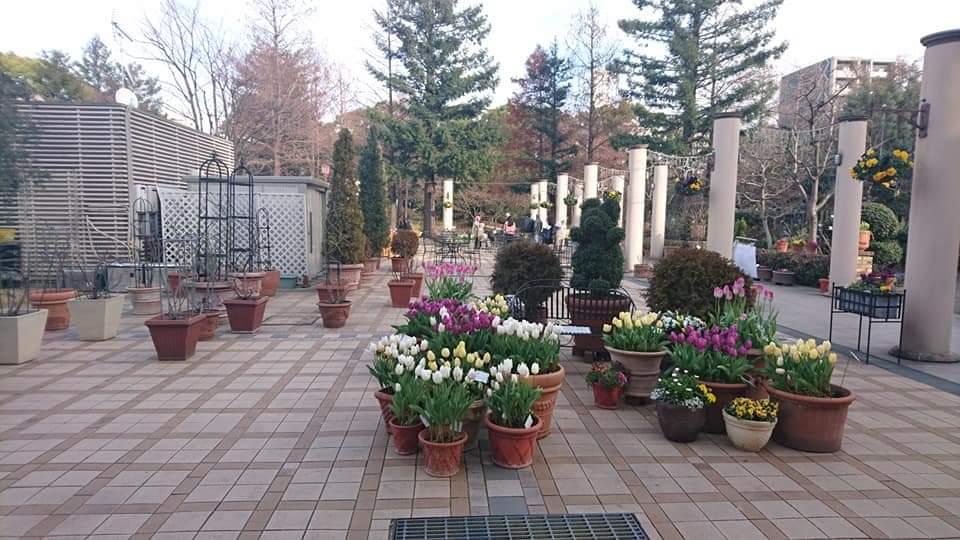 久屋大通庭園フラリエ  バレンタイン・ガーデンライブ!_f0373339_2213440.jpg