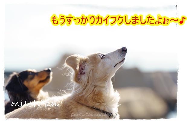 b0115642_17401877.jpg