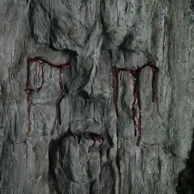 Thinking Tree/考える木は哭いている。森は嘆いている。地球は怒っている。彼らは十分待った。もう、待たない。手遅れだ。_c0109850_00401902.jpg