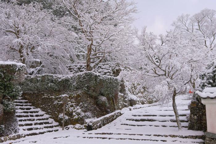 京都 大原雪景色 2019_f0021869_00023100.jpg