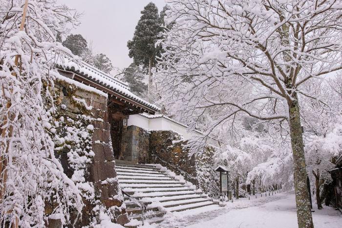 京都 大原雪景色 2019_f0021869_00023294.jpg