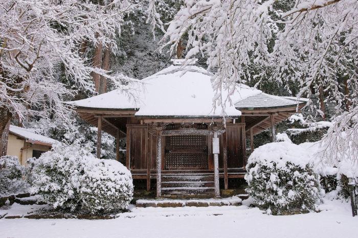 京都 大原雪景色 2019_f0021869_00023305.jpg