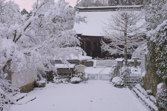 京都 大原雪景色 2019_f0021869_00023396.jpg