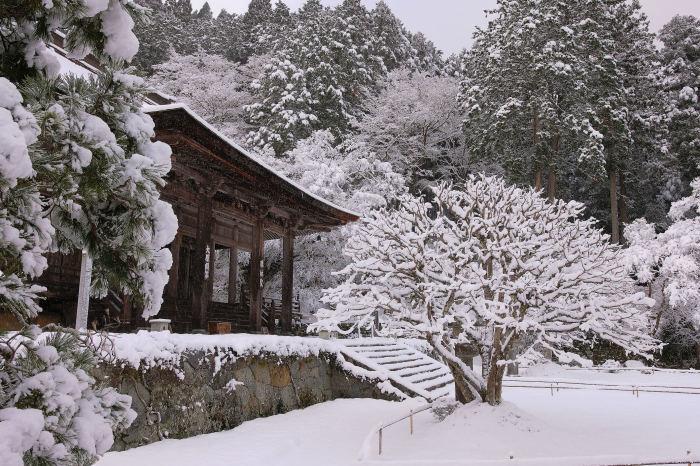 京都 大原雪景色 2019_f0021869_00023522.jpg