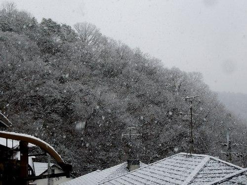 ひと冬に一度くらいは、スタッドレス・タイヤの効用を実感しないと_b0102572_10572628.jpg