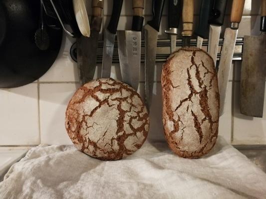 ライ麦粉で自家製酵母 サワードウ _d0090294_00200065.jpg