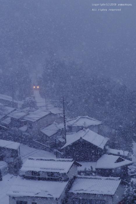 雪が降ってきた_d0309612_22075965.jpg