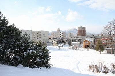 関東の雪は_b0289422_17403786.jpg