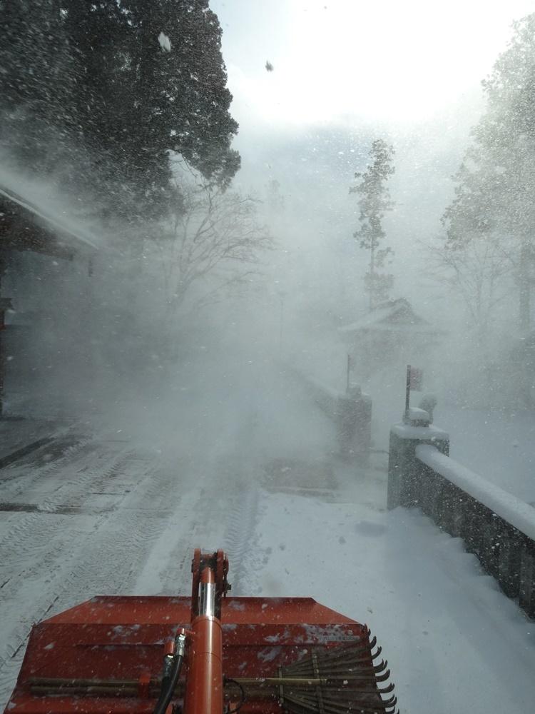 今シーズン一番の積雪_c0111229_18475258.jpg