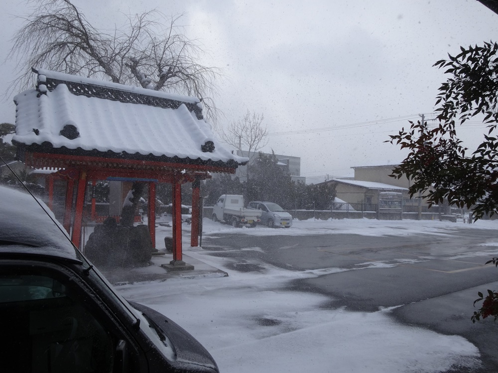 今シーズン一番の積雪_c0111229_18483888.jpg