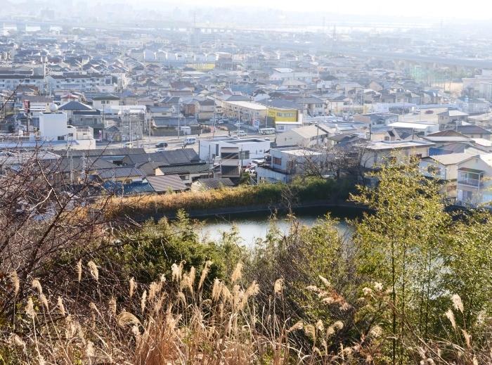 和歌山市六十谷(むそた)西ニュータウンからの風景  2019-02-14 00:00   _b0093754_22473471.jpg