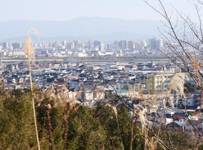 和歌山市六十谷(むそた)西ニュータウンからの風景  2019-02-14 00:00   _b0093754_22480683.jpg