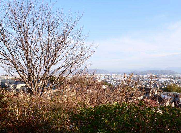 和歌山市六十谷(むそた)西ニュータウンからの風景  2019-02-14 00:00   _b0093754_22482693.jpg