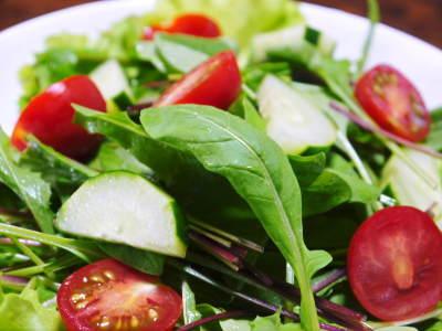 水耕栽培の生野菜を大好評販売中!さらなる高みを求め肥料改良!農薬や消毒を一切せずにてた各種生野菜です_a0254656_18150058.jpg