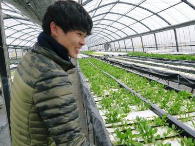 水耕栽培の生野菜を大好評販売中!さらなる高みを求め肥料改良!農薬や消毒を一切せずにてた各種生野菜です_a0254656_18373111.jpg