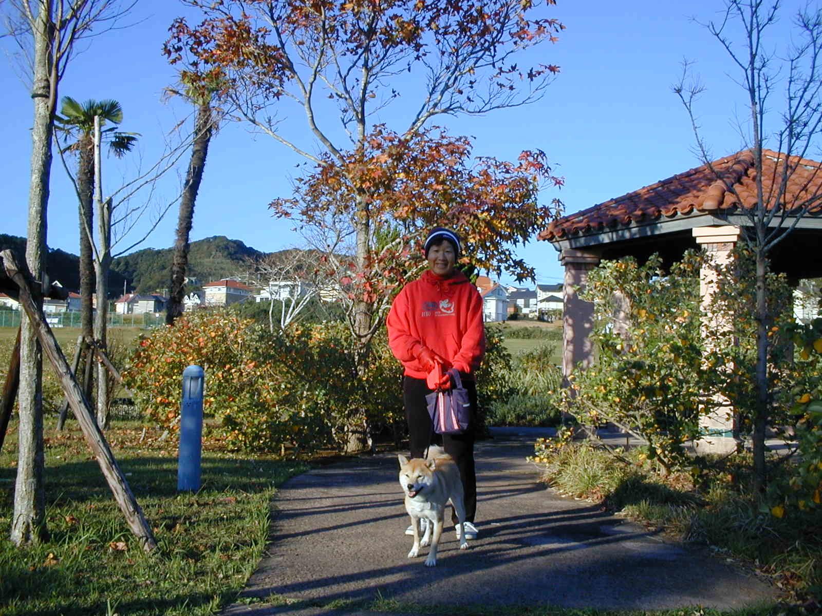 '19.2.12(火)柴犬の愛ちゃんが私の健康の源でした!_f0060461_11265422.jpg