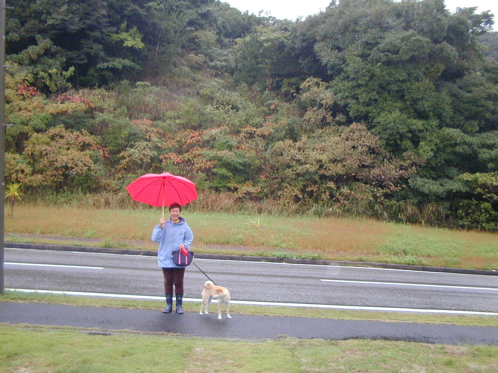 '19.2.12(火)柴犬の愛ちゃんが私の健康の源でした!_f0060461_11284527.jpg
