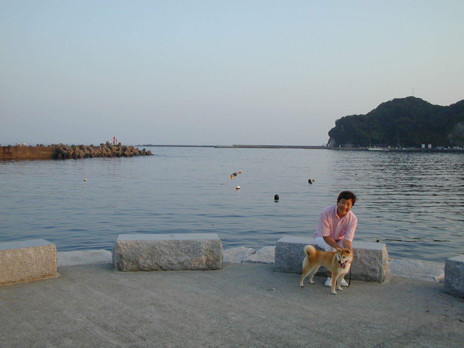 '19.2.12(火)柴犬の愛ちゃんが私の健康の源でした!_f0060461_11301704.jpg