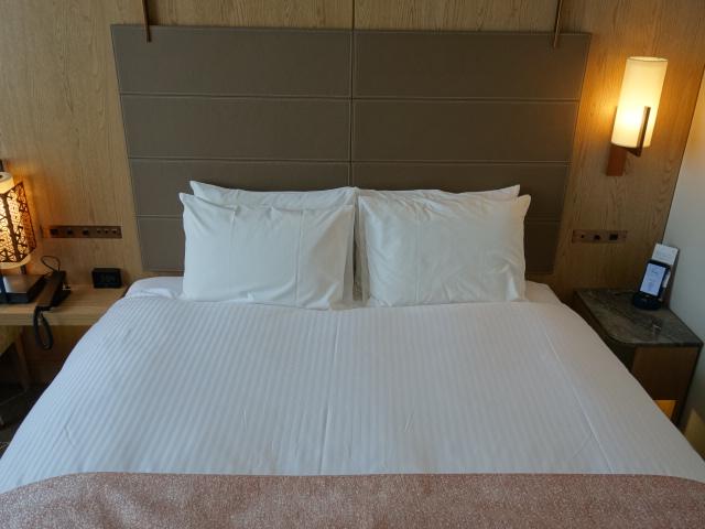 ホテル ザ セレスティン東京芝 (2)_b0405262_21125314.jpg