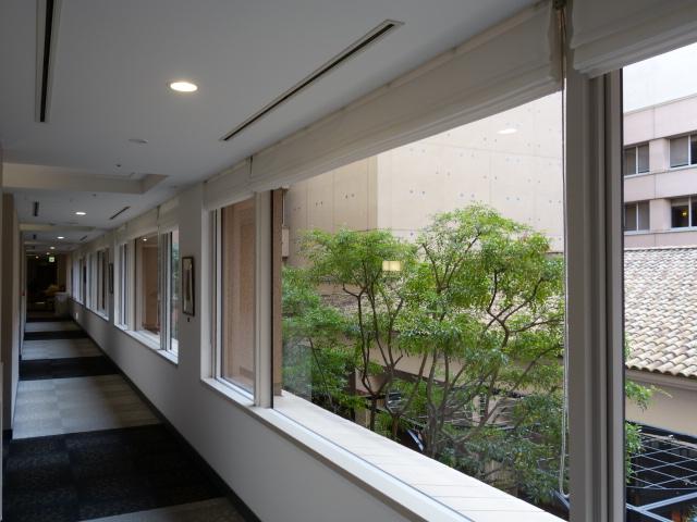 ホテル ザ セレスティン東京芝 (2)_b0405262_2193298.jpg