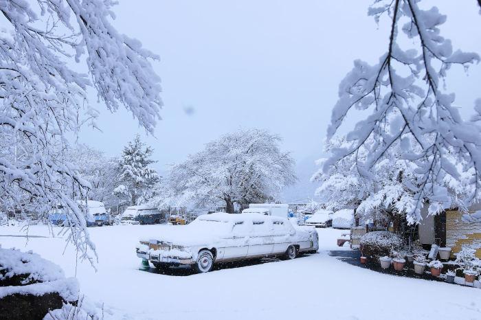 京都 大原雪景色 2019_f0021869_23431615.jpg